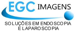 logo___